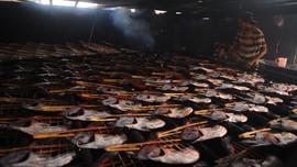 Pemerintah Bangun Sentra Lumbung Ikan Rp5 Triliun Lewat KPBU