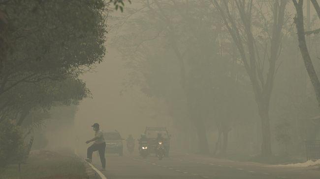 Asap kebakaran hutan tak hanya membahayakan pernafasan tapi juga kesehatan penglihatan. Apa yang perlu dilakukan untuk mengatasinya?