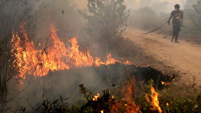 LAPAN menyebut ada 567 titik panas (hotspot) kategori rendah, sedang, hingga tinggi di seluruh Indonesia, dengan Kalimantan mendominasi.