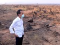 Surya Paloh: Tingkat Kepolosan Jokowi Tinggi