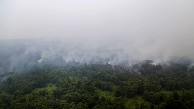 Dengan menetapkan bencana nasional, pemerintah dapat mengerahkan anggaran dengan kekuatan penuh mengatasi kabut asap.