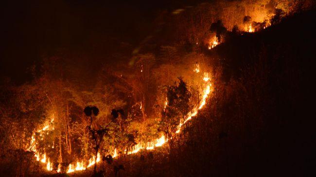 Saat ini titik api sudah sampai kawasan Pruso dan di atas Pos 4 jalur Cetho.