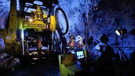 Pembangunan Smelter Freeport di Gresik Baru Capai 5,86 Persen