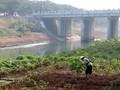Reforma Agraria Jokowi Disebut Akan Terhambat Aksi Korporasi