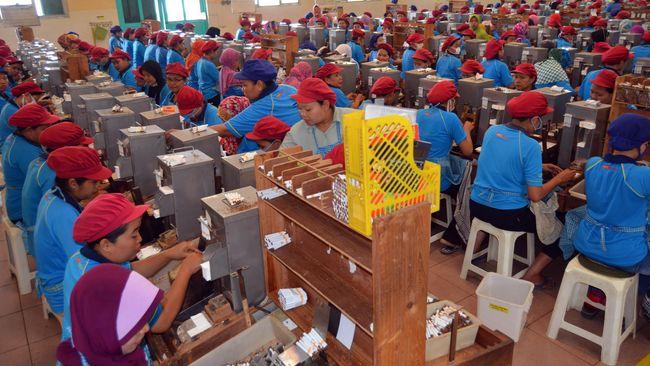 Sejumlah pekerja mitra produksi sigaret (MPS) PT HM Sampoerna melinting rokok dengan peralatan tradisional di Kabupaten Bojonegoro, Jawa Timur, Kamis (29/10). Rencana pemerintah yang akan menaikkan cukai sebesar 23 persen dalam Rancangan Anggaran Pendapatan Belanja Negara (RAPBN) 2016 memicu reaksi penolakan dari produsen rokok dan juga para pekerja. ANTARA FOTO/Aguk Sudarmojo/kye/15.