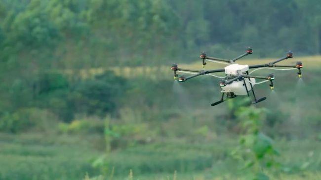Penerus drone dari seri DJI Mavic Mini, yaitu DJI Mini 2 sudah mulai dijual di Indonesia mulai hari ini Kamis (12/11).