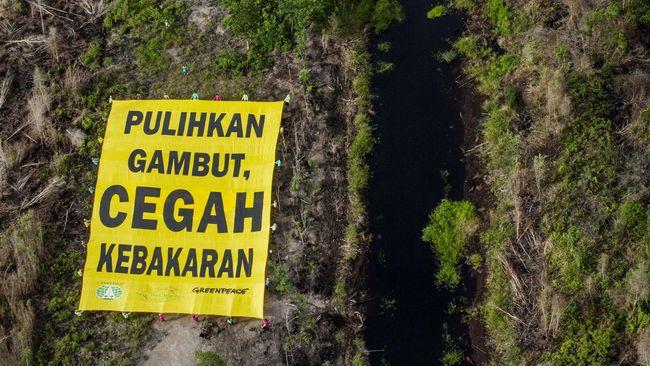 Asosiasi Pengusaha Hutan Indonesia menilai keputusan atas kasus pembakaran hutan sangat terkait dengan jaminan investasi industri hutan tanaman industri.