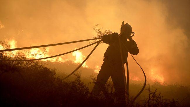 PT National Sago Prima akan melakukan banding atas putusan gugatan perdata kasus pembakaran hutan yang menghukum ganti rugi Rp1 triliun.