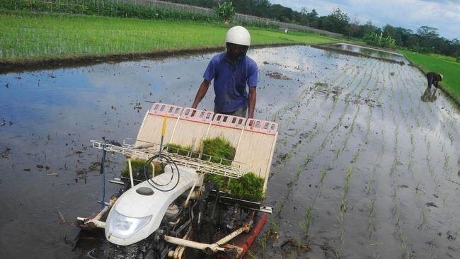 Meski Jokowi telah menyatakan akan segera menggelar reforma agraria, penggusuran lahan pertanian oleh perusahaan masih terus berlangsung di berbagai daerah.