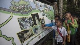 Belajar Jadi Turis Peduli Alam di Bodogol
