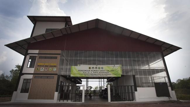 Indonesia menjadi lokasi Rumah Sakit Gajah pertama di Asia. Tepatnya di kawasan hutan Taman Nasional Way Kambas (TNWK), Lampung Timur.