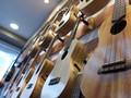 Bentuk Gitar Kini 'Ramah' Bagi Payudara