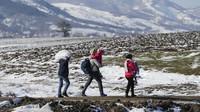 Sekitar 8.500 Pengungsi Hilang di Tengah Laut Sejak 2015