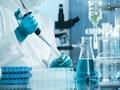 Pakar Dunia Khawatir Ancaman Pandemi Virus Nipah