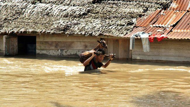 Akibat curah hujan tinggi sejak Senin lalu, 10 desa di tiga kecamatan Banggai, Sulawesi Tengah, tergenang banjir dan kini sudah mulai surut.
