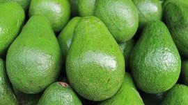 10 Makanan yang Mencegah Batuk dan Pilek di Musim Hujan