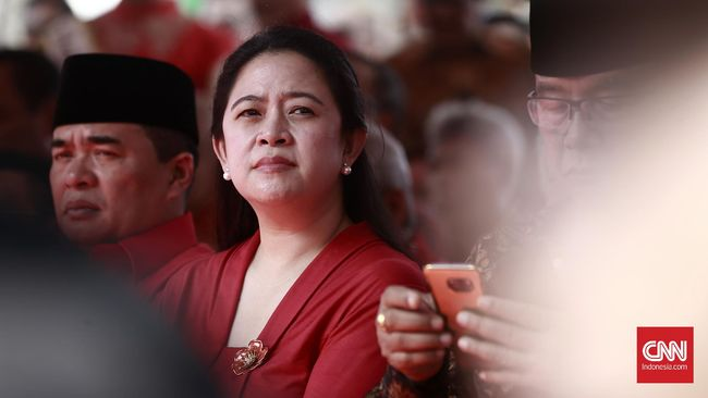 PDI Perjuangan, kata Puan, mempertimbangkan kader internal dan nama lain di luar partai sebagai calon wakil presiden mendampingi Jokowi di Pilpres 2019.