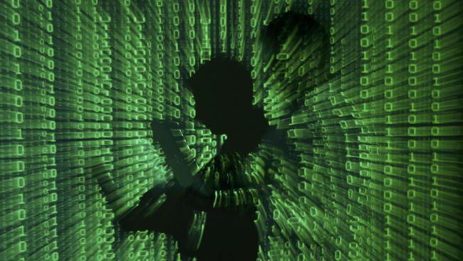 Ditjen Pajak memastikan tidak kehilangan data wajib pajak meski situsnya diretas oleh Anonymous Arabe dengan modus deface atau mengubah tampilan.