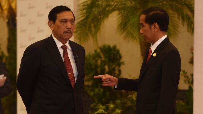 Presiden Joko Widodo menargetkan Menko Luhut Binsar Pandjaitan dan Kepala BNPB Doni Monardo menurunkan kasus covid-19 di 9 provinsi selama dua minggu.