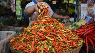 BI Sebut Inflasi Juli Terbakar Pedasnya Harga Cabai Rawit