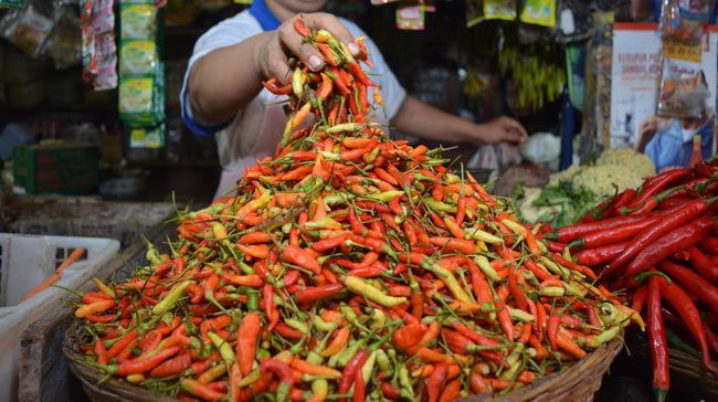 Harga Cabai Mulai Turun Rawit Merah Dipatok Rp70 Ribu Per Kg