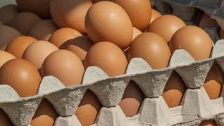Kenali Tanda dan Ciri-ciri Telur Infertil