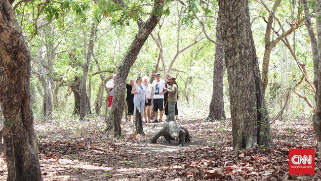 Kementerian Lingkungan Hidup dan Kehutanan menyatakan perusahana swasta boleh berbisnis di Taman Nasional Komodo karena diatur peraturan pemerintah.