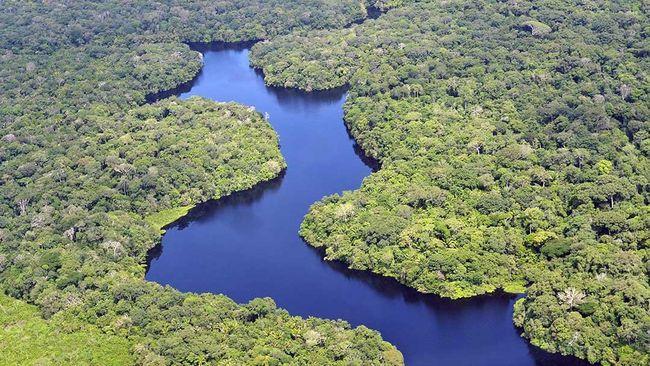 Pihak berwenang Brasil melaporkan sebuah kapal terbalik di sungai hutan Amazon, sekitar 18 orang tewas dan 30 orang hilang.