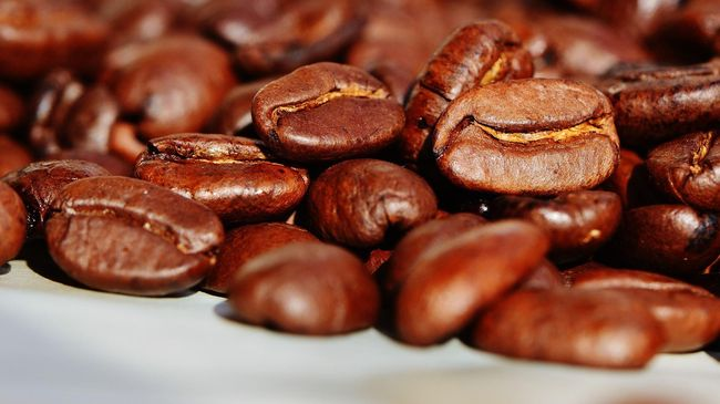 Terdapat sejumlah alasan mengapa harga kopi luwak mahal. Salah satunya, produksinya langka. Pada masa kejayaannya, harganya bisa mencapai Rp1-1,5 juta per Kg.