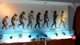 Mencari Jawaban Evolusi Manusia Purba Jadi Manusia Urban