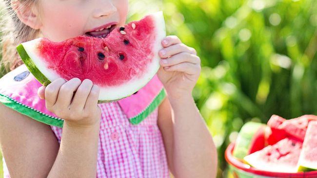 Ilustrasi Anak Makan Semangka