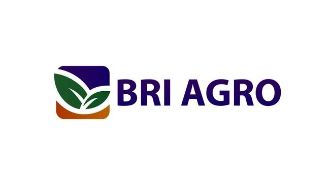 BRI Agro Resmi Ganti Nama Jadi Bank Raya