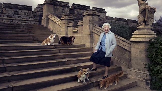 Bagi yang bermimpi ingin menyelami kehidupan keluarga Ratu Elizabeth II, ada salah satu cara yang mungkin bisa dilakukan untuk mewujudkannya.