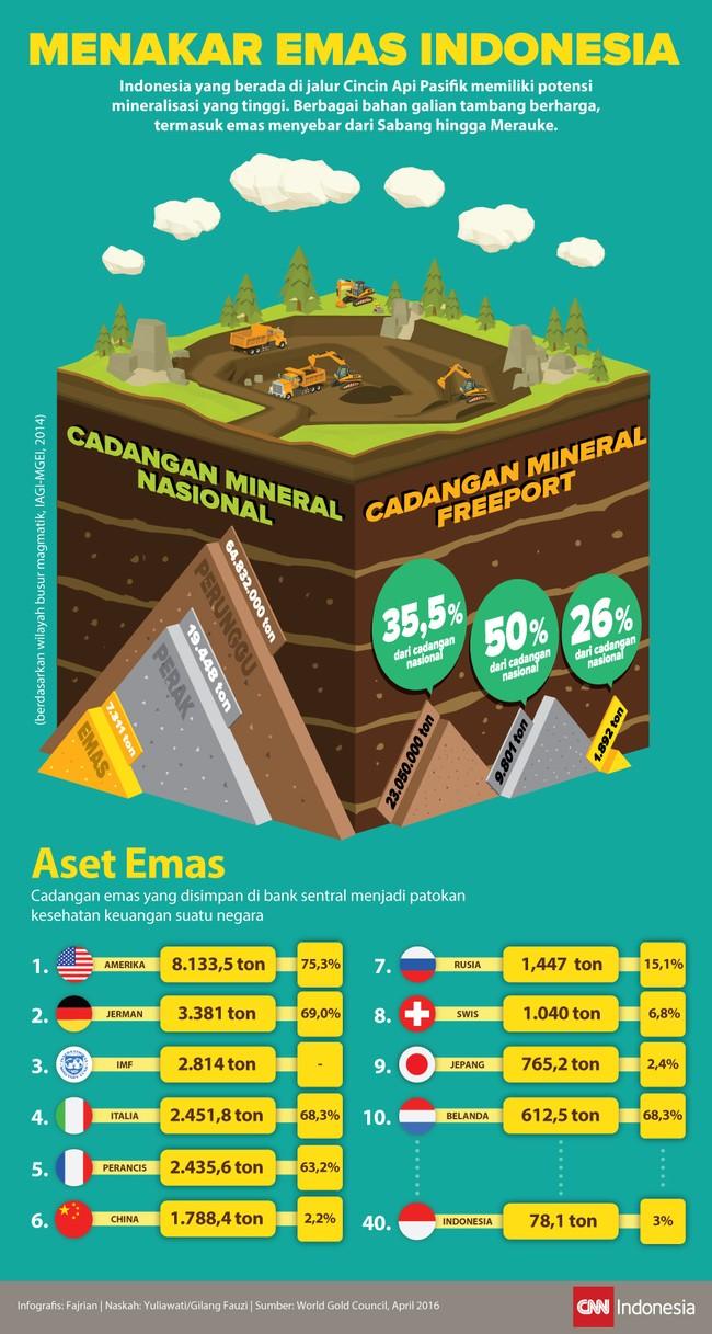Indonesia yang berada di jalur Cincin Api Pasifik memiliki potensi mineralisasi yang tinggi. Kekayaan sumber daya alam menyebar dari Aceh hingga Papua.