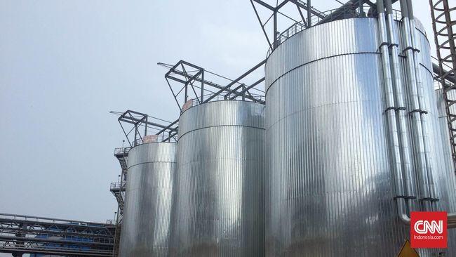 Pembangunan smelter Virtue Dragon Nickel Industry terhambat karena pekerja China mereka tidak bisa masuk ke RI.