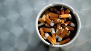 Beda Kanker Akibat Rokok Keretek dan Filter