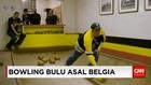 Bowling Bulu Asal Belgia