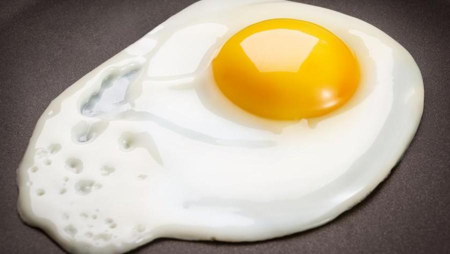 Kalau Mau Punya Anak Cerdas, Ibu Hamil Disarankan Makan Telur