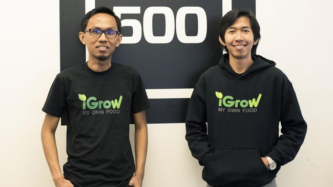 iGrow yang digambarkan sebagai Framville dalam kehidupan nyata, akan mengembangkan lahan pertanian organik dan berencana ekspansi lahan ke Turki dan Jepang.