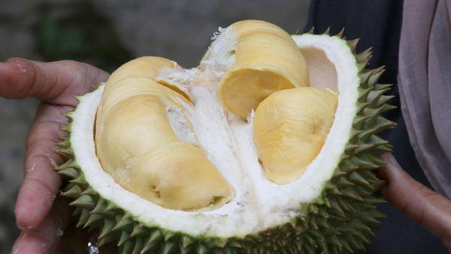 Setelah heboh dengan pisang lakban yang terjual mahal, kini giliran durian yang dilakban di sebuah toko di Singapura.