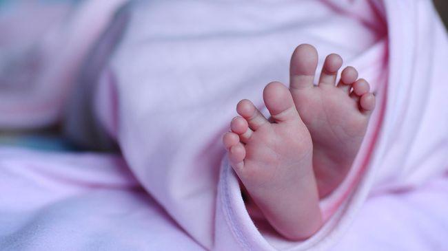 Pasangan Irish Bella dan Ammar Zoni kehilangan bayi kembar mereka. Bayi kembar mereka mengalami stillbirth alias kelahiran meninggal atau kematian mati.