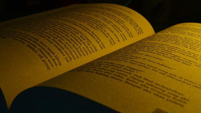 Bagi sastrawan Linda Christanty, selama bahasa Indonesia masih digunakan, ia akan selalu hidup dan punya asa di masa depan.