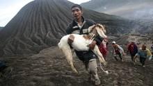Menyinggung Hati Suku Adat, Turis Didenda 8 Kerbau