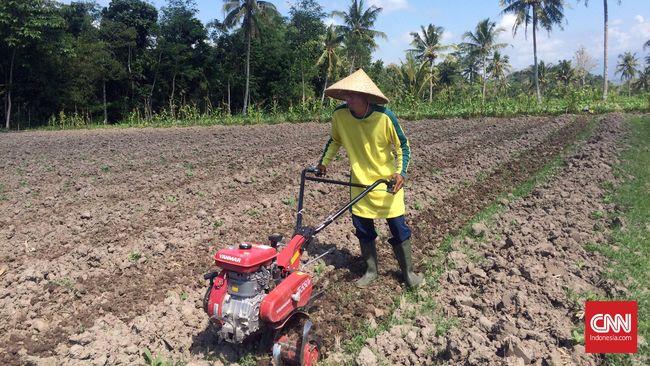 Minat anak muda dinilai semakin rendah terhadap sektor pertanian karena dianggap sebagai pekerjaan yang tak menjanjikan di masa mendatang.