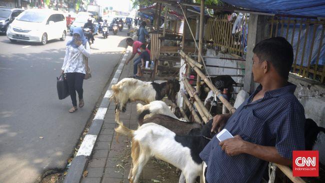 Camat Johar Baru melayangkan surat teguran kepada pedagang hewan kurban di atas trotoar. Polisi bisa menindak pelanggaran pidana.