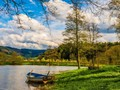 Sempat Menghilang Satu Dekade, Danau di Virginia Muncul Lagi