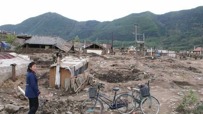 Topan Lingling dilaporkan menerjang Korea Utara hingga menewaskan lima orang dan menghancurkan ratusan bangunan selama akhir pekan lalu.