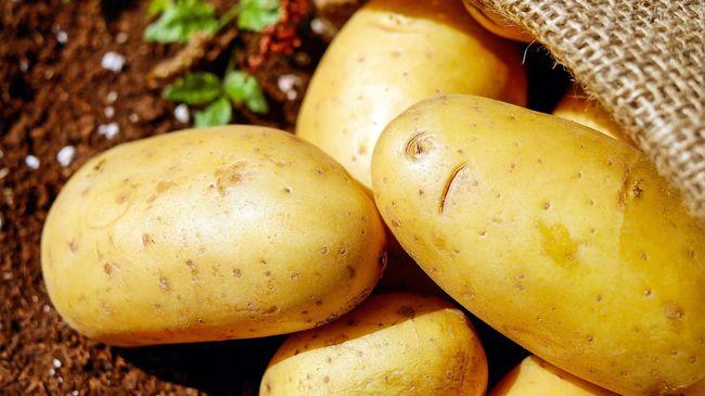 Agar olahan kentang semakin mantap di lidah, berikut cara memasak kentang yang disarankan para koki.