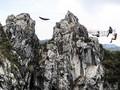 Sensasi Petualangan di Ketinggian Gunung Hawu