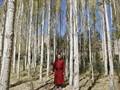 Pergulatan Tradisi dan Industri di Tanah Ladakh